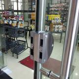 Las puertas de oscilación dobles de Frameless de la alta calidad con Tublar dirigen Kz047