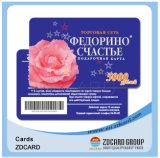 Kundenspezifische Plastik-PVC-Gymnastik-Beispielmitgliedskarte
