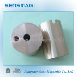Assemblage permanent de NdFeB Magnets Magnetic pour Different Application