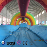 Trasparenza di acqua gonfiabile di tema del Rainbow di disegno dell'acqua dei Cochi LG9055
