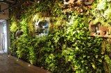 훈장을%s 새로운 디자인 조경 디자인 주황색 잎 가짜 잔디 벽 인공적인 녹색 벽