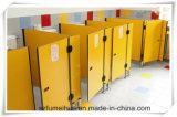 Le type coloré et beau badine la partition de compartiments de toilette avec le panneau des garnitures HPL