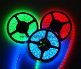 높은 루멘 600LEDs 2835 LED 지구 빛