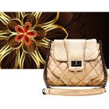 Nuove borse d'avanguardia del progettista di alta qualità Bw243