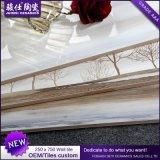 中国の製造者250× 750浴室及び台所壁のタイルの陶磁器の壁のタイル