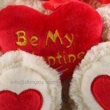 De in het groot Gevulde Dieren van de Pluche van de Valentijnskaart van de Gift Teddybeer