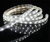 decorazione della striscia 7-8lm di 3528SMD LED dell'interno con ETL Approved/60LEDs