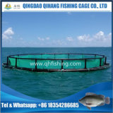 Gabbia netta di piscicoltura dell'HDPE di alta qualità per l'agricoltura di tilapia