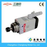 Motore standard 1.5kw 18000rpm dell'asse di rotazione di CNC del Ce per l'asse di rotazione raffreddato aria di falegnameria
