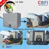CBFI cliente dieron la bienvenida Diseño Integrado de Hielo comestible Máquina
