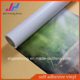 Stagnola autoadesiva smontabile libera del vinile della bolla di aria per la stampante solvibile
