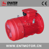 特別な使用のための電気ACモーター