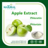 Estratto della buccia del Apple di alta qualità/polvere naturali 98% di Phloretin