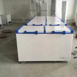 réfrigérateur solaire de congélateur de C.C 108L pour l'usage à la maison