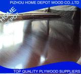 contre-plaqué fait face par film de 18mm fait par Hardwood avec la colle parfaite