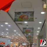 De bilaterale Hangende Banner van pvc van de Banner Tweezijdige (dou-03)