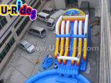 Parque inflável gigante da água com associação e corrediça