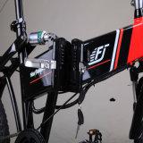 Faltendes elektrisches Fahrrad mit dem 20 Zoll-Gummireifen für Dame