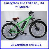 Bicicleta elétrica da sujeira com bateria do frasco