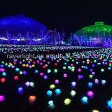 Luces al aire libre de la decoración de la flor de la bola del LED para el uso del jardín