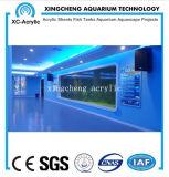 Proyecto material de acrílico modificado para requisitos particulares del tanque del tiburón de la hoja del acuario
