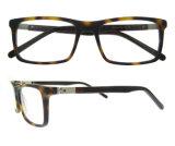 Telaio dell'ottica del nuovo di stile dell'acetato del commercio all'ingrosso delle azione monocolo di Eyewear