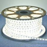 5050 120V 6000k impermeabilizzano l'indicatore luminoso di striscia esterno del LED