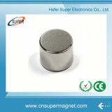 Fabrikant van China paste de Permanente Magneet van het Neodymium van de Cilinder van de Zeldzame aarde aan
