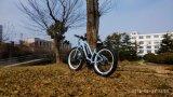 Montaña eléctrica Ebike del nuevo neumático gordo de 26 pulgadas con el MEDIADOS DE motor 8fun para la venta
