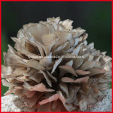 Maitake 추출 또는 Grifola Frondosa 추출 분말 또는 Maitake 버섯 추출