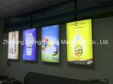 China-Klasseen-UVdrucker für Werbebranche