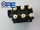 Aufhebung Comprssor der Luft-Q7 unterschiedliches Ventil-pneumatische Magnetspule-Block-Verteilung