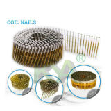 Salut-Load Coil Nails Nails machine