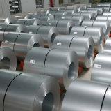 Chapa de aço ou placa laminada nas bobinas