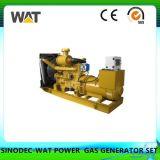 10-100kw 전기 힘 생물 자원 발전기 세트