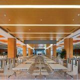 Techo de aluminio del panel del diseño especial con el SGS para la decoración interior