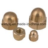 Bonne qualité Brass Hexagon Acorn Nut