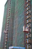 Grue d'ascenseur de levage d'élévateur de construction