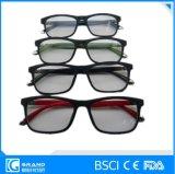 De modieuze LEIDENE Optimale Glazen van de Optische Lezing
