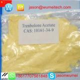 Polvere dell'acetato di Revalor-H Finaplix 100 Trenbolone