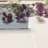 серый цвет Glass&Color 4mm подкрашиванное бронзой стеклянное для украшения/здания