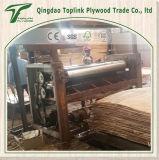Contre-plaqué de peuplier de bouleau/contre-plaqué marin/contre-plaqué commercial d'usine