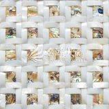 Azulejo de mosaico de agua dulce de la cara del arco del shell y del shell del olmo