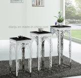 Basamento di fiore di lusso della mobilia del metallo di disegno speciale (DF1008)