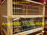 Cestino resistente accatastabile e pieghevole della rete metallica del contenitore/della rete metallica