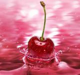Выдержка 17% вишни Acerola высокого качества естественная