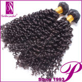 直接買物の加工されていないインドの毛の織り方のねじれた巻き毛の波
