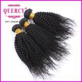 Beste verkaufenprodukt-verworrene lockige brasilianische Jungfrau-Haar-Webart