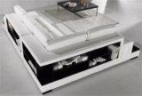 Le sofa neuf de cuir de salle de séjour de modèle de meubles à la maison a placé (HC2028)