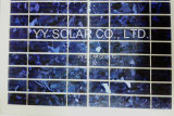 Colorfull Solar Panel 20W